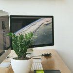ワードプレス初心者でもできた Instant WordPress を使ったローカル環境の構築方法