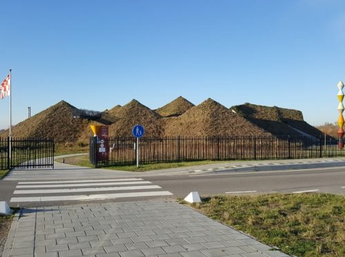 biesbosch1